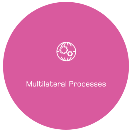 Multilateral Processes