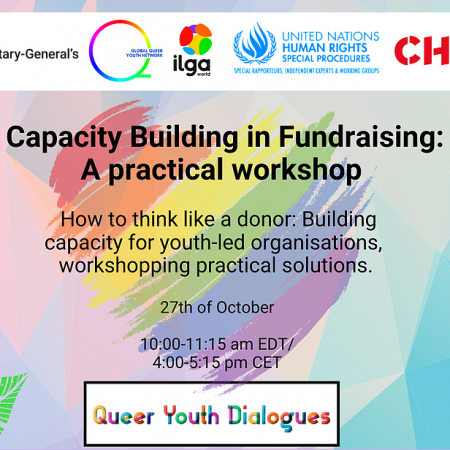 Capacity Building in Fundraising: A practical workshop with CHOICE for Youth & Sexuality